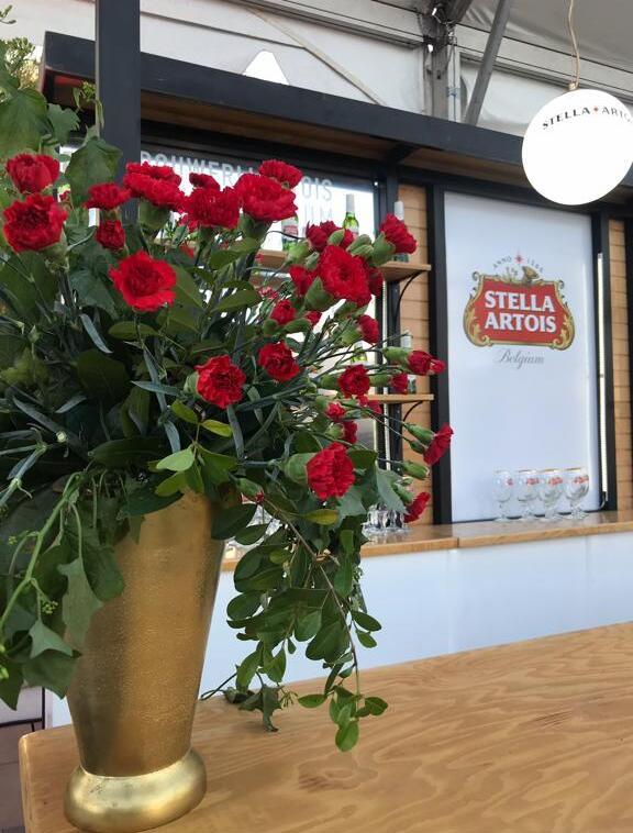 Mañana Gran Inauguración Casa Stella en Tegucigalpa