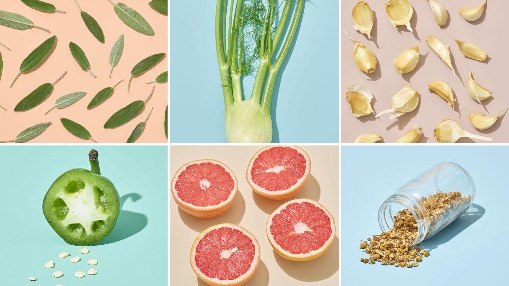5 alimentos para fortalecer nuestro cuerpo
