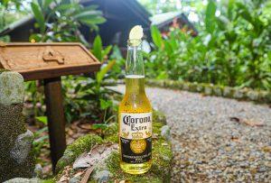 Redescubre el paraíso: The Lodge&spa at Pico Bonito